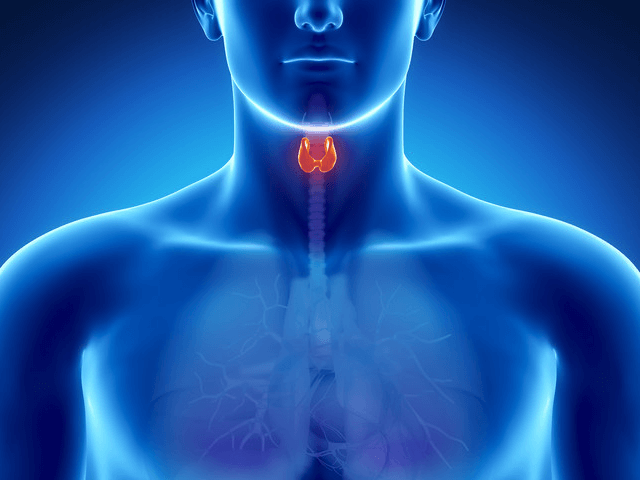 What Causes Hypothyroidism?