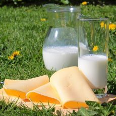 Should You Avoid Dairy if You Have Hashimoto's Disease?