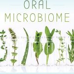Heal Your Oral Microbiome